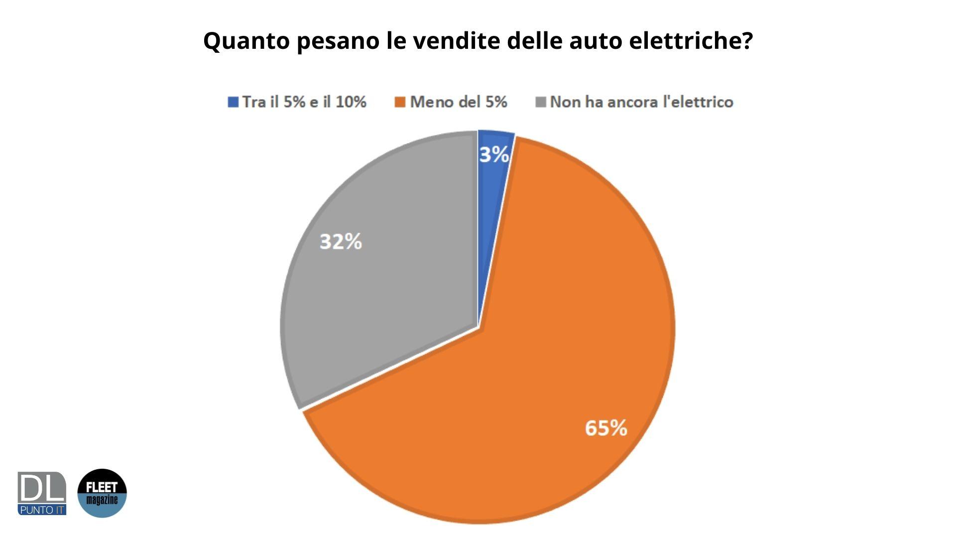vendite auto elettriche quanto pesano
